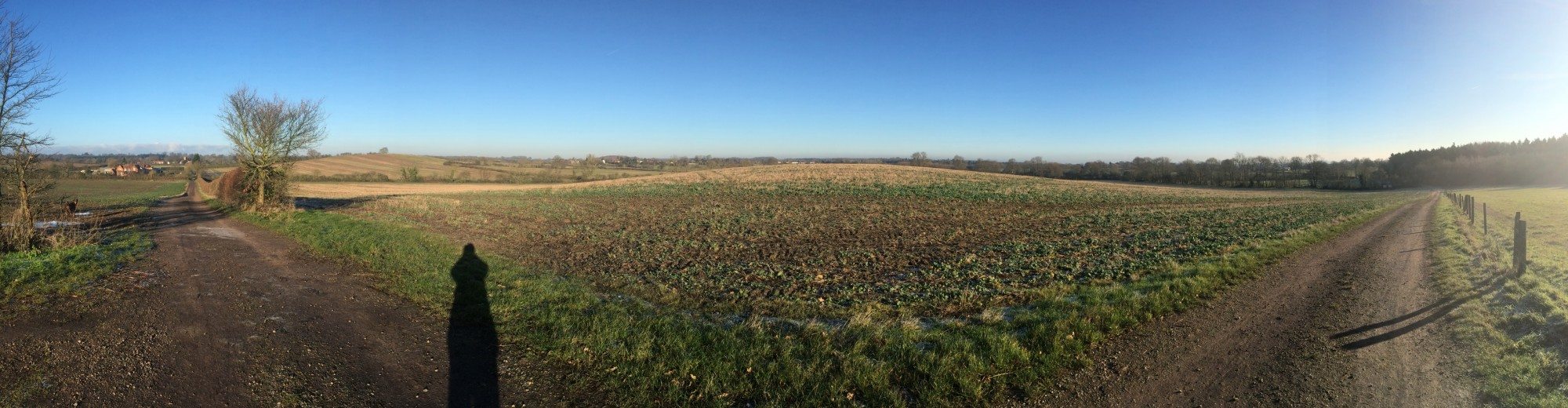 Eversholt - A view over the fields