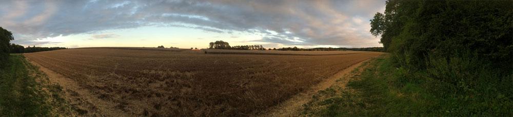 Castle Farm Fields